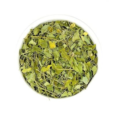 moringa infusion infusiones hierba yerba